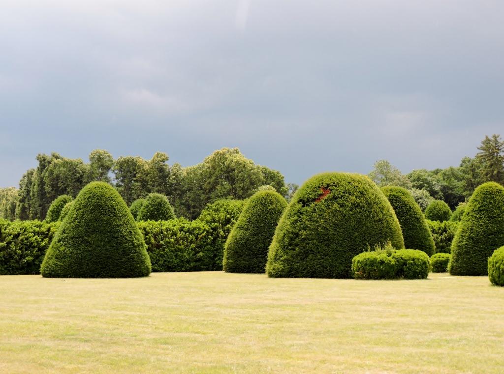 Kegelförmige Bäume, Residieren im Schloss - gräflich oder fürstlich?