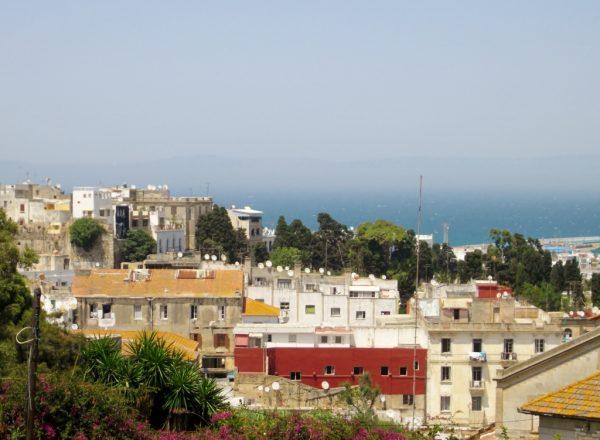 Blick von oben auf Häuser am Meer