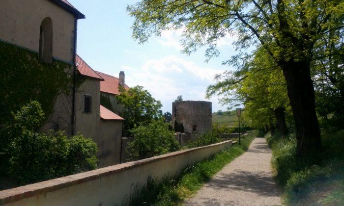 Alte Stadtmauer mit Turm