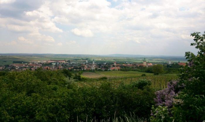 Blick vom Kalvarienberg ins Wein Gebiet Retz