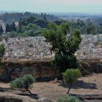 Friedhof_Fés_Marokko