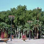 Palmenpracht vor dem Königspalast_Fès