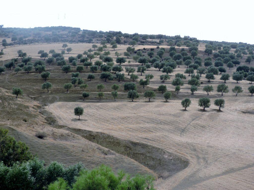 Die Quellen von Sidi Harazem_Reisen