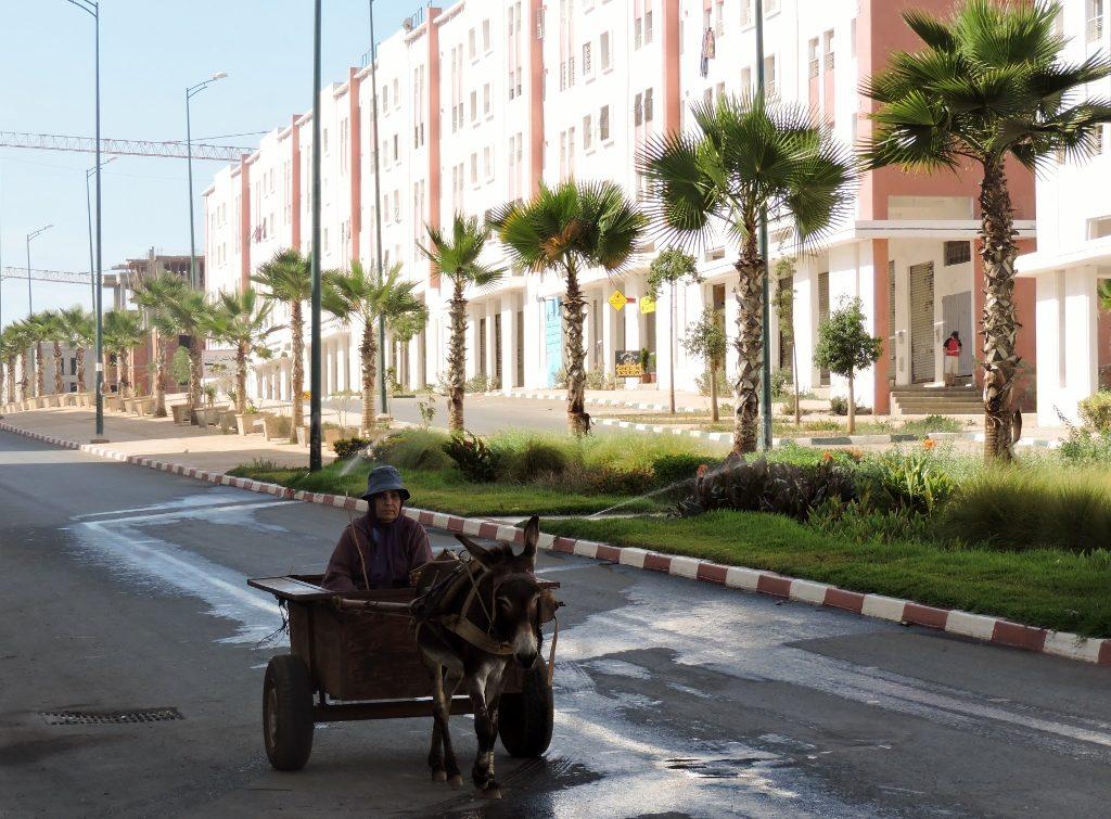 Reisen in Marokko mit dem Eselskarren
