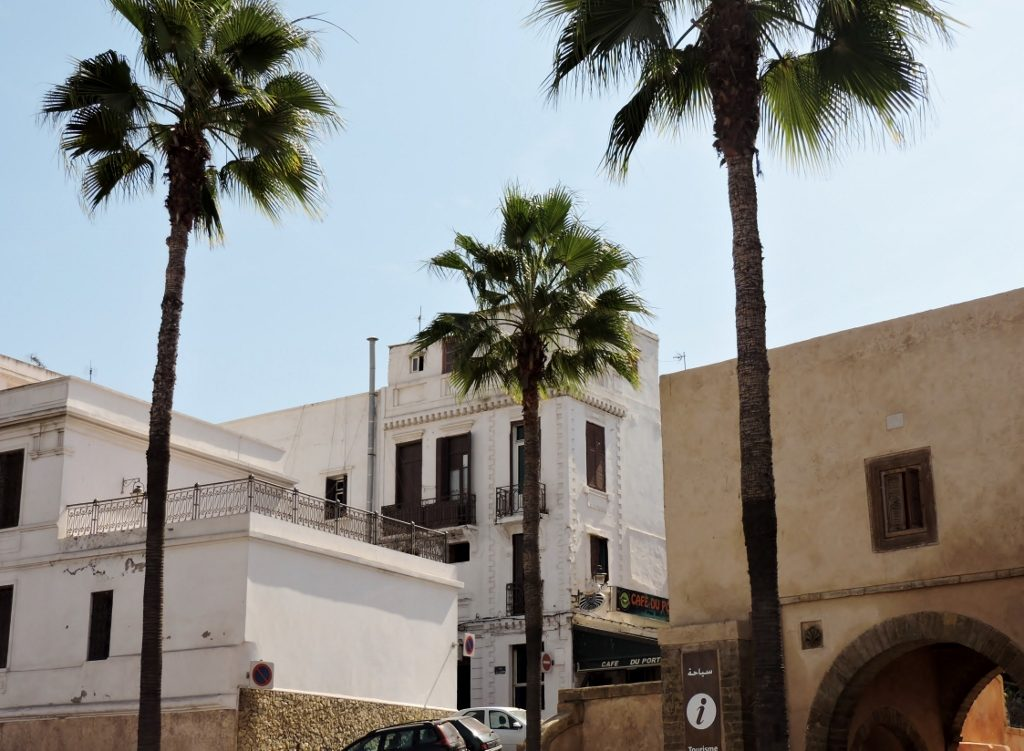 weiße Häuser mit Palmen in Nordafrika