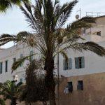 marokkanisches Gebäude mit Palme davor