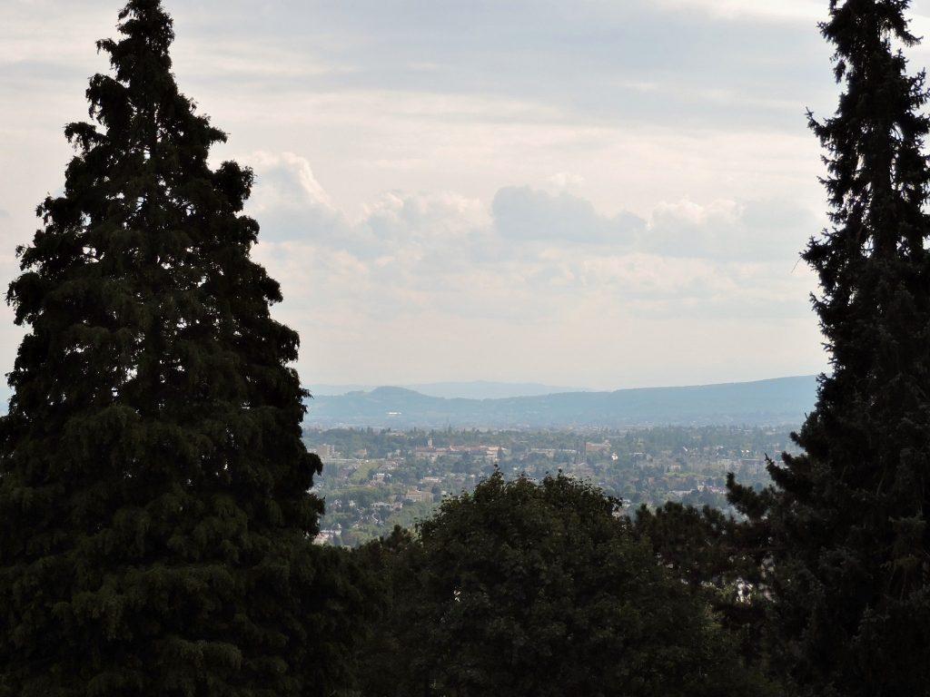 Ausblick bei Ausflug in Wien zu Jugendstil Architektur