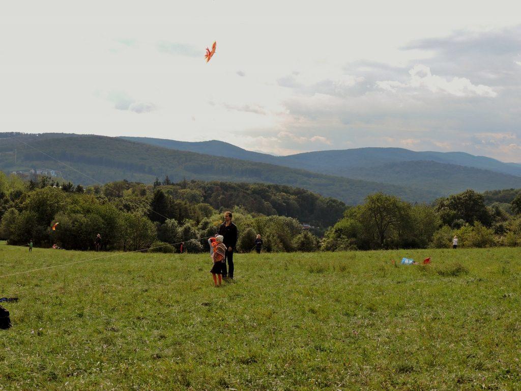 Drachensteigen in grüner Hügellandschaft