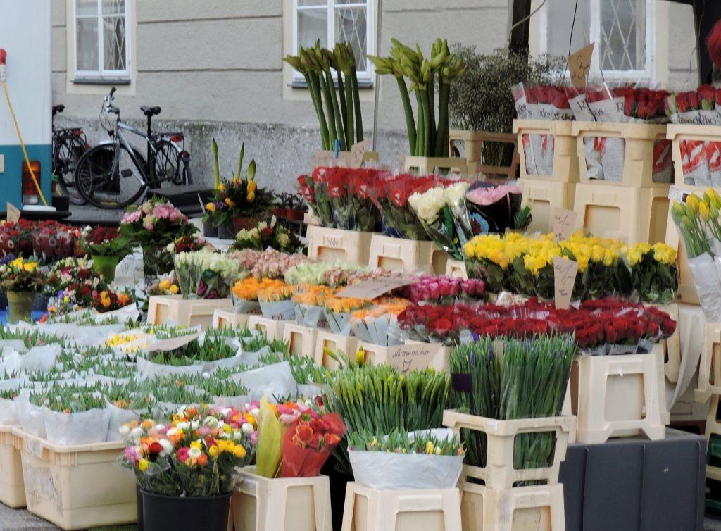 Blumenstand im Salzburg Frühling