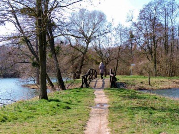 Spaziergang in den Teich-Landschaften in Sarvar, Ungarn