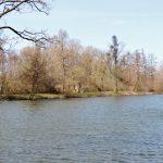 Teich-Landschaften in Sarvar - Stimmungsbilder