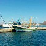 Boote am Meer Hafen_Türkei
