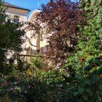 Garten in Altstadt Salzburg