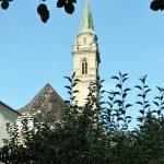Kirchturmspitze hinter Büschen