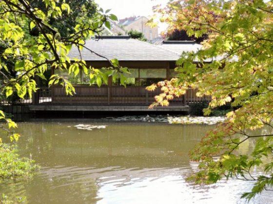 Teich mit Holzhaus