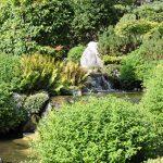 Japanischer Garten mit Pflanzen