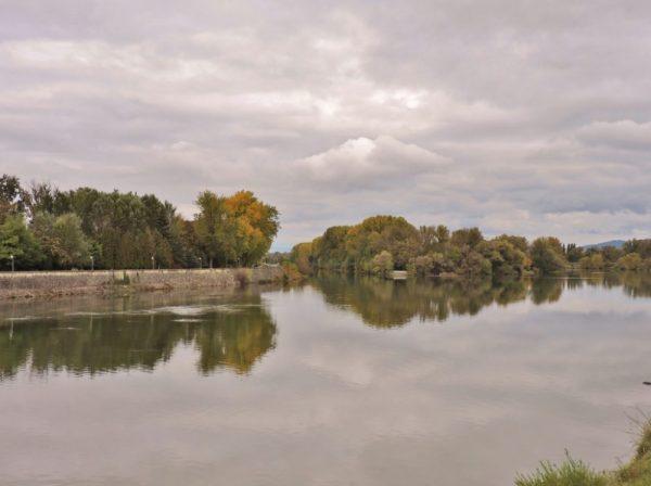 am grünen Flussufer