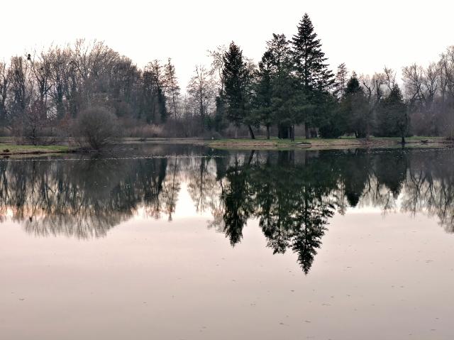 Teiche und Landschaft