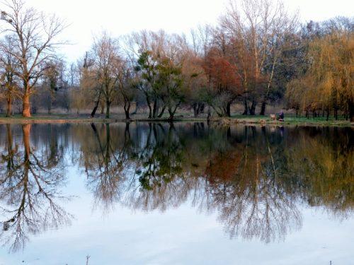Im Zauber der Teich-Landschaften Sárvár