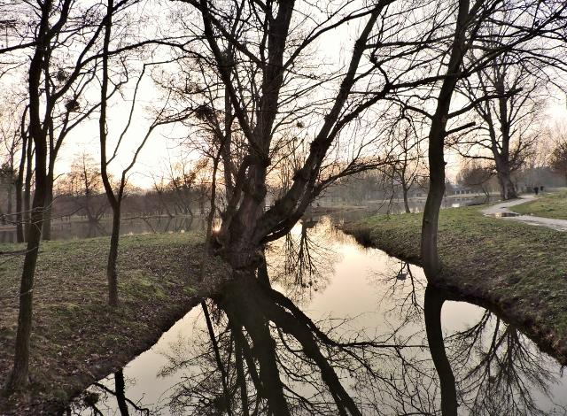 Im Zauber der Teich-Landschaften