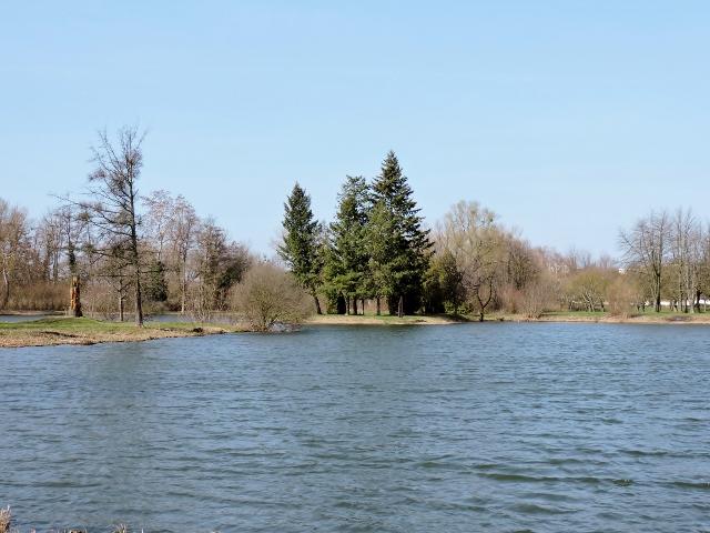 Naturlandschaft mit Teich