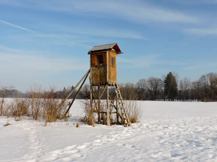 Holz-Wachturm im Wenger Moor