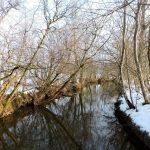 Landschaft im Winter_Wallersee