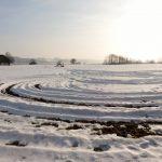 Spuren im Schnee, Wenger Moor