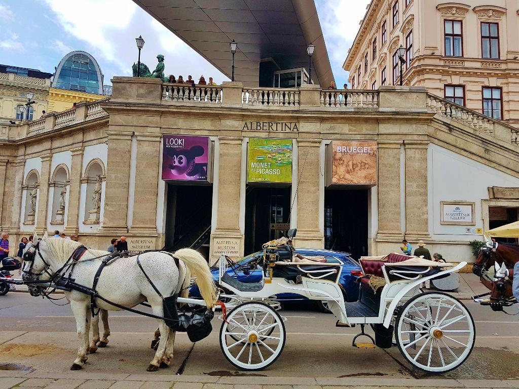 Bruegel und Raffael in Albertina Wien