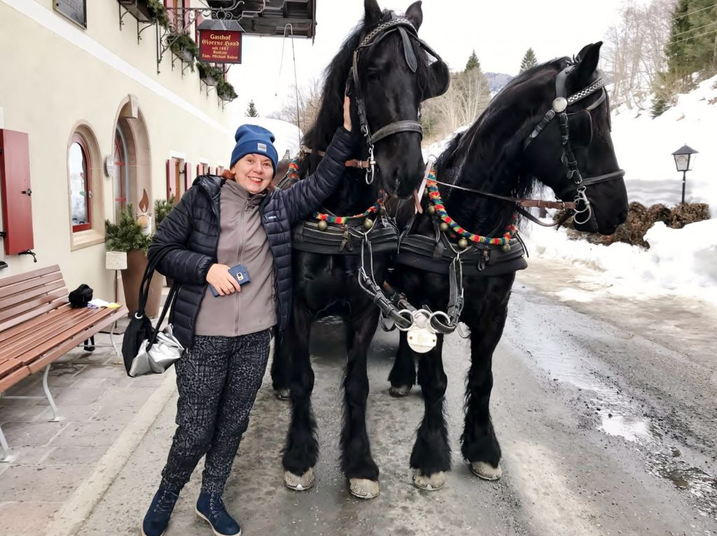zwei schwarze Pferde ziehen Kutsche