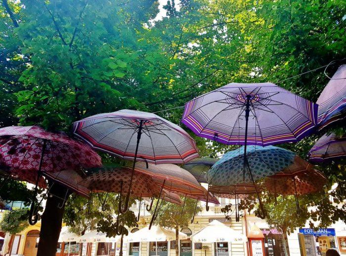 bunte Schirme unter grünen Bäumen