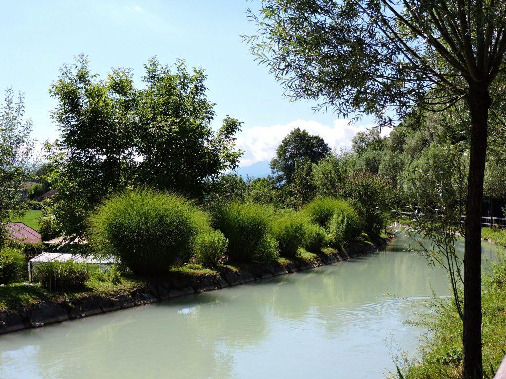 Bach mit grüner Uferbepflanzung
