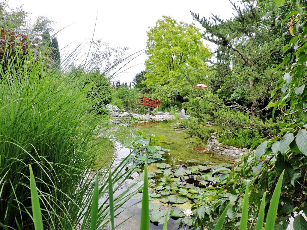 asiatische Gartenkultur