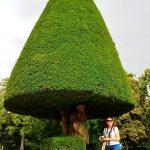 kegelförmig geschnittener Baum