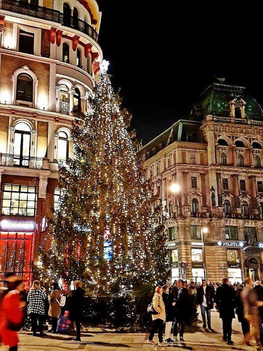 Weihnachtsmarkt am Wiener Stephansplatz mit großem Weihnachtsbaum