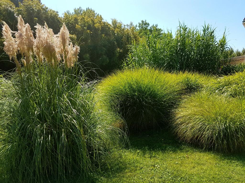 Botanischer Garten als Wien Ausflugsziele kostenlos