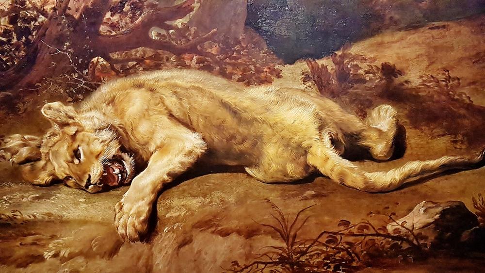 "Löwin aus Ausstellung ""Rubens bis Makart"""