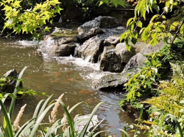 Biotop als Ausflugsziel Wien kostenlos