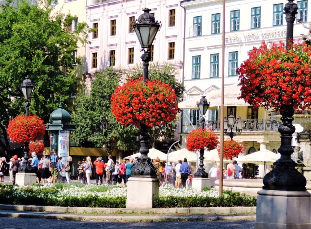 Twin City Liner Bratislava
