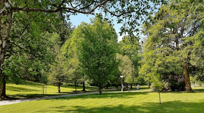 Park mit grünen Bäumen Trencianske Teplice Thermalbad