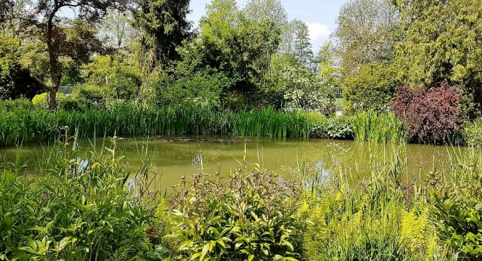 Garten in Rothenburg ob der Tauber