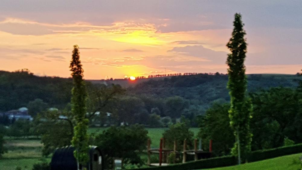 Sonnenuntergang über den Weinbergen