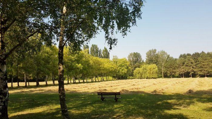 Marienkron Park