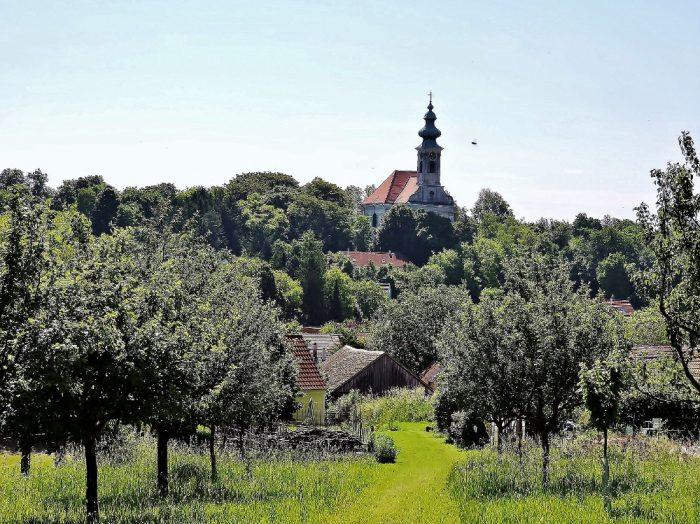 grüne Weinviertler Landschaft mit Kirche