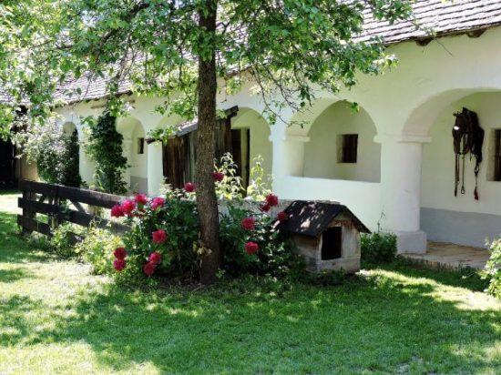 Haus im Museumsdorf Niedersulz