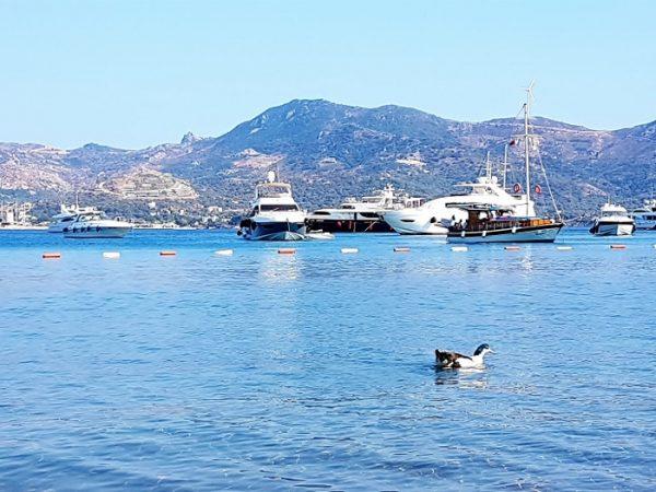 Bodrum Urlaub, Jachten im Meer