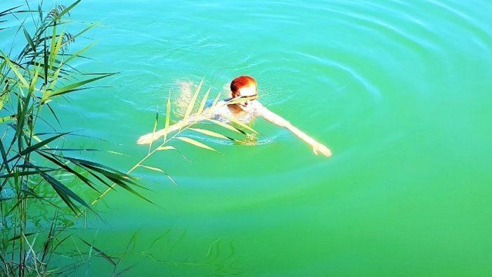 Baden im Irrsee, eine Frau schwimmt