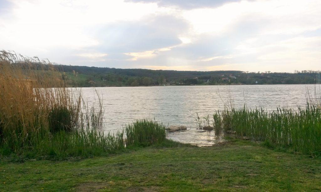 ein kleiner See in grüner Landschaft