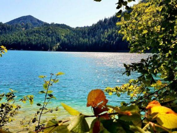 klarer Bergsee mit grüner Umgebung