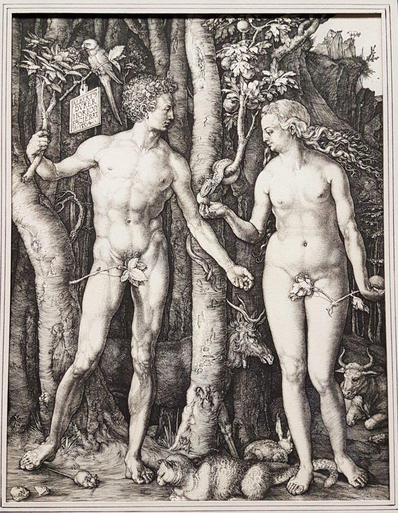 Grafik von Albrecht Dürer